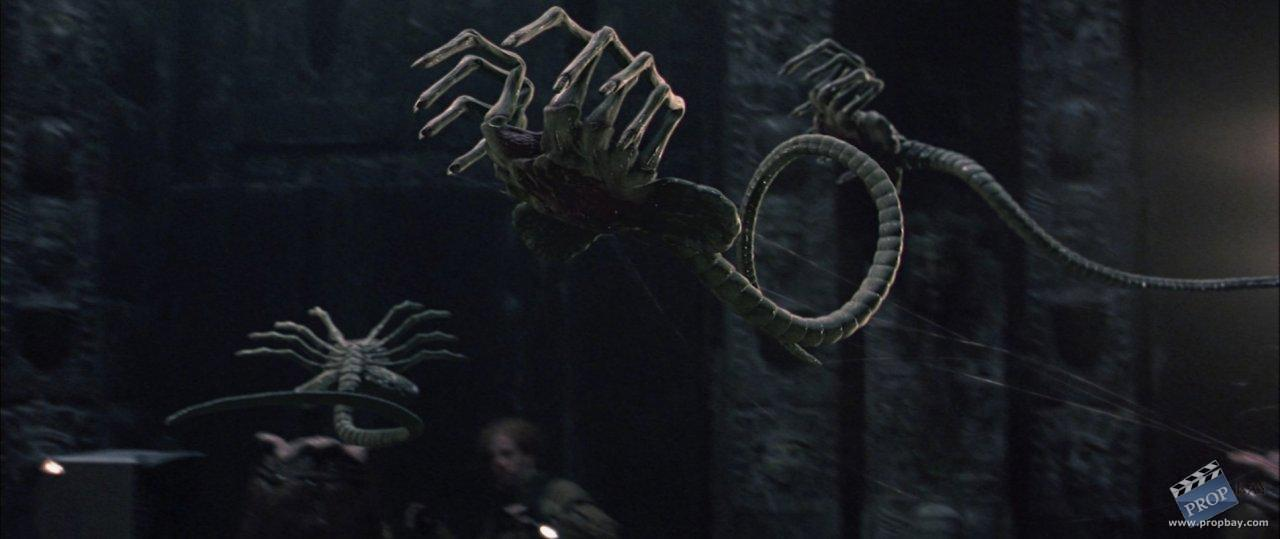 alien vs predator facehugger - photo #3