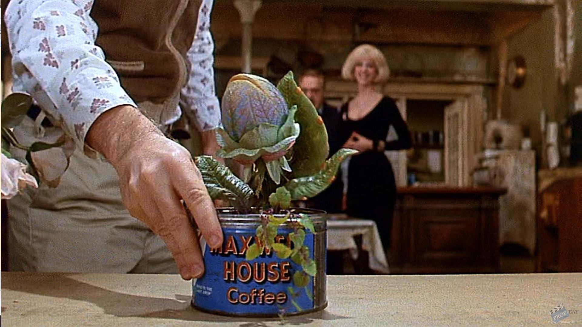 an analysis of the character of seymour in little shop of horrors Little shop of horrors cast of characters seymour mid-twenties and perhaps balding a little our insecure, naive, put-upon, florist's clerk hero above all, he's a.
